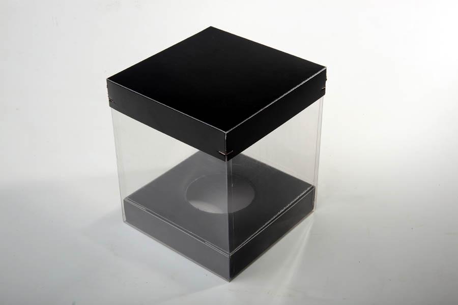 Klarsichtschachtel kombiniert mit schwarzem Karton